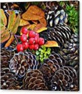 Mixed Company Acrylic Print