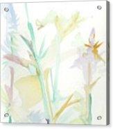 Mixed Stalks Morning Flowers Acrylic Print