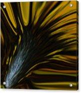 Mixed Sunflower Acrylic Print