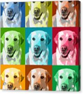 Golden Retriever Warhol Acrylic Print
