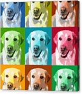 Golden Retriever Warhol Acrylic Print