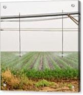 Mobile Irrigation Robot  Acrylic Print