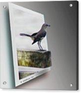 Mockingbird - Use Red-cyan 3d Glasses Acrylic Print