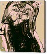 Model IIi Acrylic Print