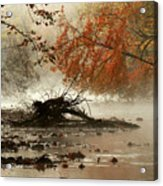 Mohican In Autumn Acrylic Print