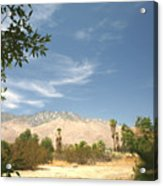 Mojave Acrylic Print