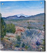 Mojave Desert With Mt San Jacinto California Usa 2001   Acrylic Print