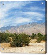 Mojave Pan 2 Acrylic Print