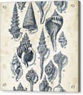 Mollusks - 1842 - 17 Acrylic Print