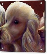 Molly Charlie and Abby Acrylic Print
