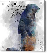 Mom And Baby Bear Acrylic Print
