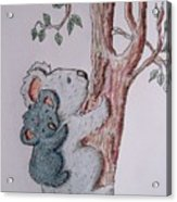Momma And Baby Koala Acrylic Print
