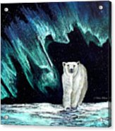 Monarch Of His Arctic Domain Acrylic Print