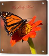 Monarch On Tithonia Mother's Day Gifts Acrylic Print