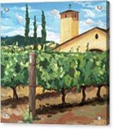 Mondavi Vineyard, Napa Acrylic Print