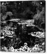 Monet Lake Acrylic Print