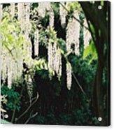 Monet's Garden Delights Acrylic Print