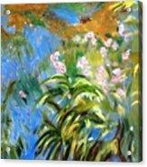 Monet's Irises Acrylic Print