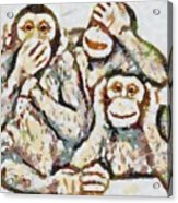 Monkey See Monkey Do Fragmented Acrylic Print