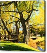 Mono Lake Garden Bridge Acrylic Print