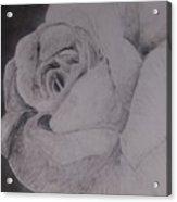 Mono Rose Acrylic Print