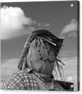 Monochrome Scarecrow Acrylic Print