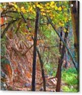Monrovia Canyon In Fall Acrylic Print