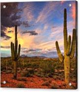 Monsoon Desert Sunset  Acrylic Print