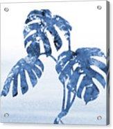 Monstera Leaf-blue Acrylic Print
