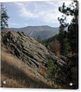Montana - Wilderness Acrylic Print