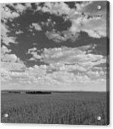 Montana, Big Sky Country Acrylic Print