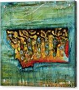 Montana Brookie Acrylic Print
