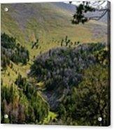 Montana Call Of The Wild Acrylic Print
