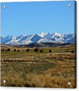 Montana Mountains Big Sky Acrylic Print