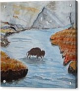 Montana Wildlife Acrylic Print
