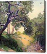Montecito Dry River Oaks Acrylic Print