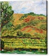 Montelena Memories Acrylic Print