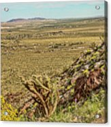 Montezuma Rd-borrego Occitillo Wells View Acrylic Print
