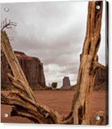 Monument Valley deadwood Acrylic Print