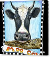 Moo Cow In Black Acrylic Print
