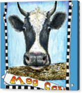 Moo Cow In Blue Acrylic Print