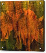 Moods Of Africa - Rhinos Acrylic Print