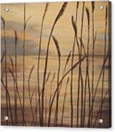 Moody Sunset Acrylic Print