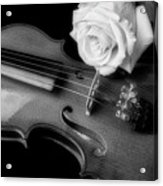 Moody Violin And Rose In Black And White Acrylic Print