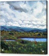 Moody Wetlands Acrylic Print