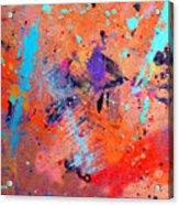 Moon And Sixpence Acrylic Print