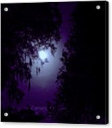 Moon - Between - The - Trees Acrylic Print