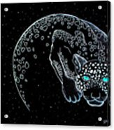 Moon-cat  Acrylic Print