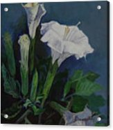 Moon Flower  Acrylic Print