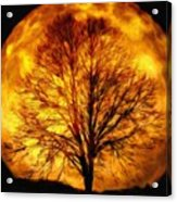 Moon - Id 16236-105015-0839 Acrylic Print